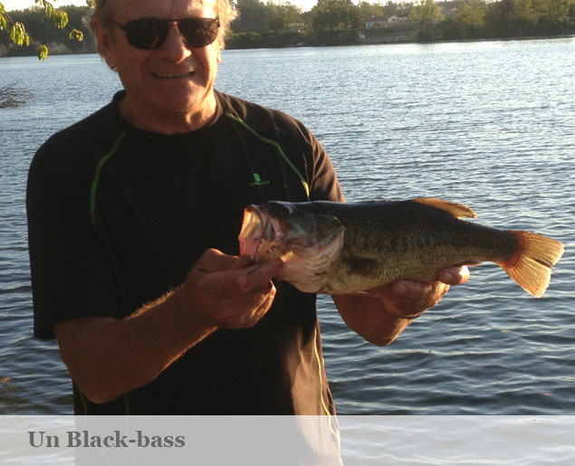 photo peche blackbass